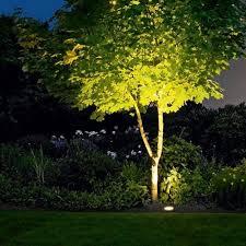 outdoor tree spotlights