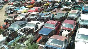 mustang salvage yard the amazo effect the s largest mustang scrapyard