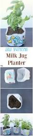 how to make self watering planters out of milk jugs must have mom