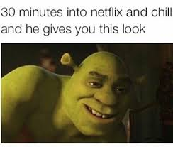 Suggestive Meme - neflix and chill memesguy