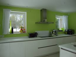 schroder cuisine cuisine verte et blanche blanc vert moderne 201302271452577o lzzy co