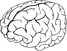 Drawn Brain Coloring Page Pencil And In Color Drawn Brain Brain Coloring Page
