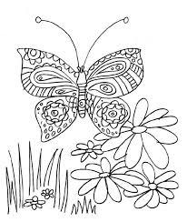 dibujo mariposa en las flores colorear dibujos infantiles
