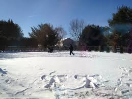 Backyard Hockey Rink Kit by Weather And Writing Part Ii How Building A Backyard Ice Rink Is