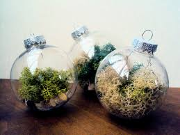 Birch Tree Decor Set Of Three Woodland Moss Ornaments Filled With Birch Slices