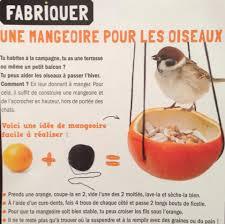 fabrication mangeoire oiseaux idées pour nos amis les animaux pour cet hiver à faire soi même