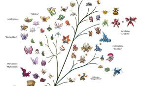 tree of life every pokemon has been organized into a tree of life