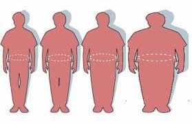 Satire essay examples on obesity