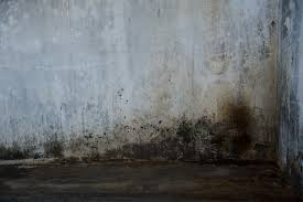 how to remove black stains on hardwood floor