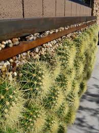 Vertical Garden Walls by A Closer Look At The Barrel Cactus Wall Vertical Installation From