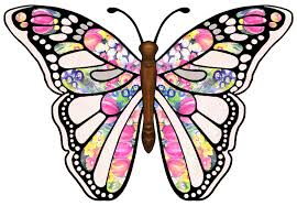 free butterfly clip art drawings andlorful images 3 cliparting com