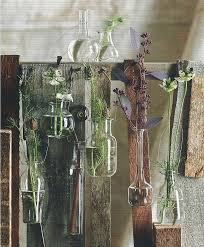 Roost Vases 51 Best Kémcső Images On Pinterest Test Tubes Flowers And Marriage