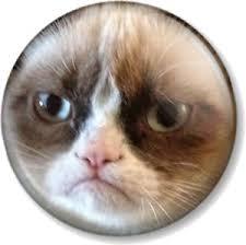 Grumpy Meme Face - grumpy cat face 25mm 1 pin button badge internet meme funny pet