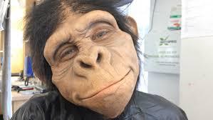 my pet monkey prosthetic makeup application youtube