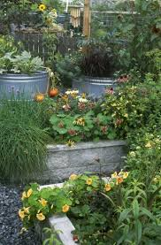 Raised Bed Vegetable Garden Design by 320 Best Kitchen Gardens Images On Pinterest Veggie Gardens