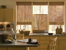 Stylish Kitchen Curtains by Kitchen Kitchen Window Treatments And 51 Kitchen Window