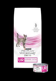 ur urinary st ox cat food pro plan veterinary diets