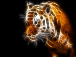 tiger wallpapers archives page 5 7 hd desktop wallpapers