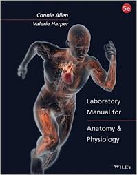 Principles Of Anatomy And Physiology 13th Edition Tortora Tortora Anatomy And Physiology Pdf Download 14th Edition