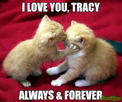 Tracy Meme - i love you tracy always forever meme custom 17368 page 8