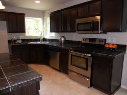 Black Oak Kitchen Cabinets Interior Interesting Black Granite Kitchen Countertop For Your
