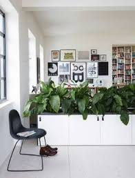 Office Room Partitions Dividers - office partitions ideas living plants plant containers office