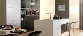 Kitchen Cabinet San Francisco Kitchen Cabinets Kitchen European Cabinets White Stained Wood
