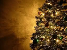 nicole charles u0026 associates christmas tree farms near madison