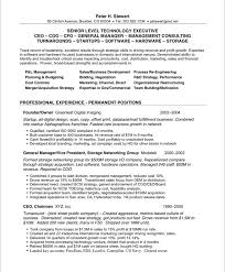 ceo resume template simple design coo resume sle chief operating officer sles