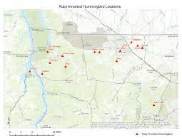 Hummingbird Map Ruby Throated Hummingbirds U2013 Southeastern Avian Research