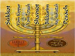 shabbat menorah menorah of 7 feasts torah and feasts shabbat kosher