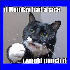 Funny Memes About Monday - monday funny memes clean king tumblr