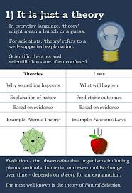 the 25 best theory of evolution ideas on pinterest bohr model