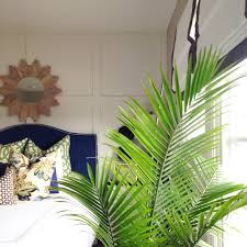 Plant Home Decor by Decorating With Palm Fronds