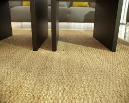 Area Rugs Pottery Barn Top 76 Ace Sisal Rug Ikea Fuzzy Carpet Fluffy Area Rugs Pottery