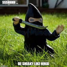Meme Ninja - ninja imgflip