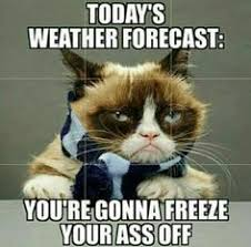 Funny Cold Memes - pictures and quotes of cold whether hate cold weather quotes