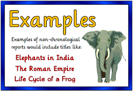 report writing template ks1 non chronological reports treetop displays printable eyfs ks1