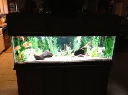 marineland aquatic plant led lighting system w timer 48 60 marineland freshwater plant led light pics