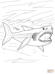 megalodon shark coloring free printable coloring pages