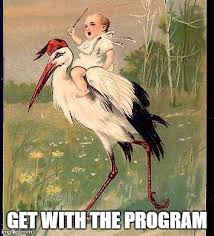 Meme Maker Program - image tagged in eager stork baby imgflip