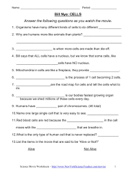 7th grade science worksheet worksheets