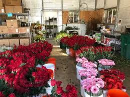 beaverton florist flower power flower secrets revealed s day hints for