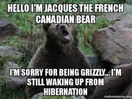 Jacques Meme - hello i m jacques the french canadian bear i m sorry for being