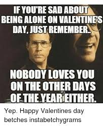 Alone On Valentines Day Meme - if youre sad about being alone on valentines day justrememberl