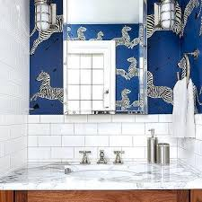 Zebra Themed Bathroom Boy Zebra Theme Powder Room Design Ideas