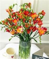 cheap flowers online why acquire cheap flowers online