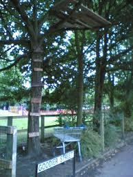 which is goodier the or a tree platform treehouse by