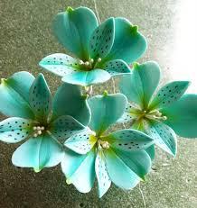 teal flowers teal flowers dress images