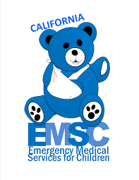 emergency medical services authority topics